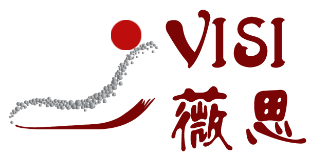 Yiwu visi lifestyle co., ltd